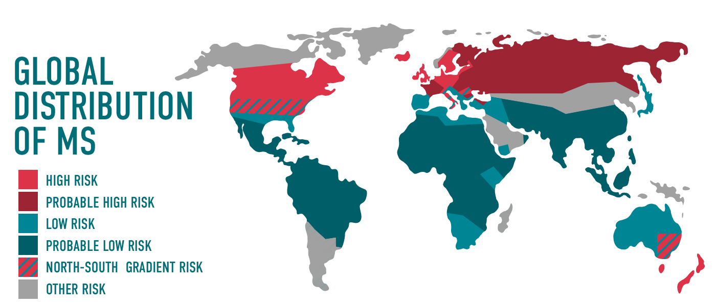Global MS
