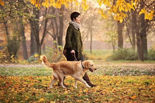 rsz_young_woman_walking_dog_in_fall_folliage