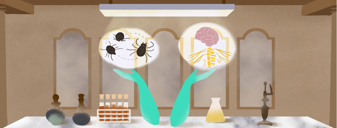A pair of hands present a few ticks and a brain with a nervous system attached inside a laboratory. Five foggy windows are behind the hands, and test tubes, a microscope, and other chemical bottles sit on the marble table with the hands.