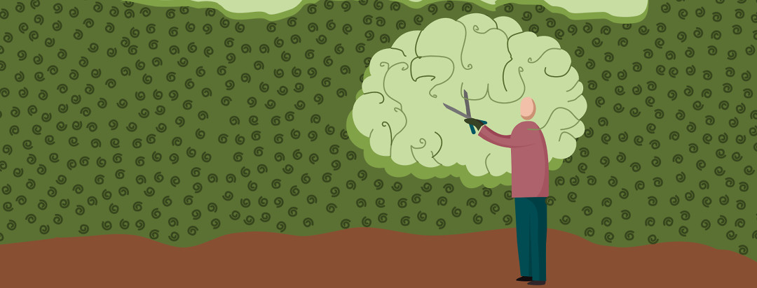 A person pruning a large hedge and cutting a brain shape out of it.