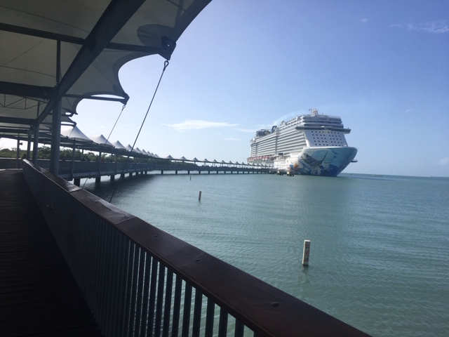 View of docked cruise ship