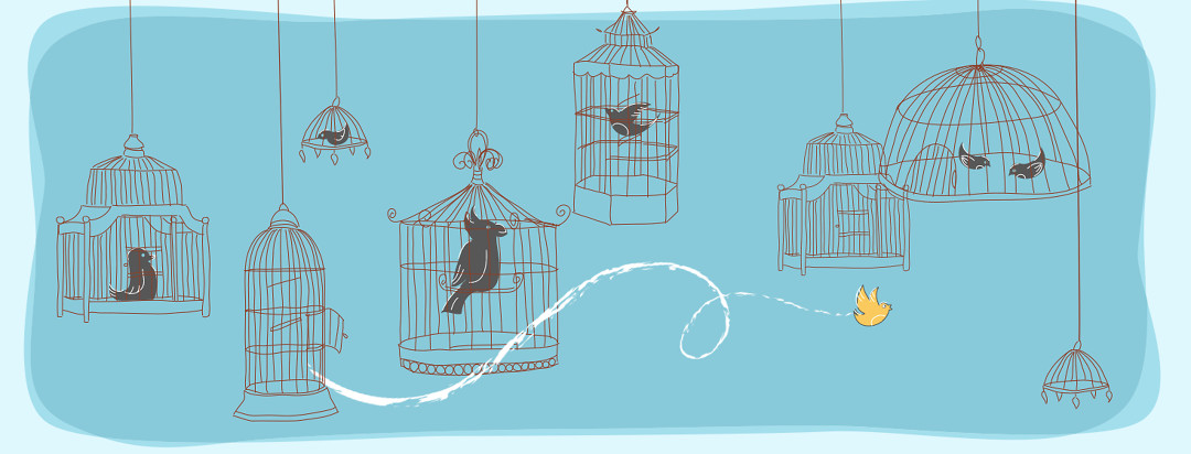 A series of birdcages hang from the ceiling with different grey birds inside. A yellow bird is flying free from an open cage.